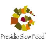 logo_presidio